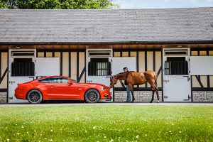 MustangDriveDeauville2015_14