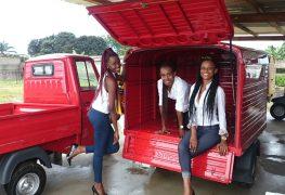 E adesso l'Ape svolazza in Gabon