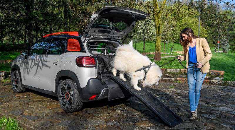 Citroën-pet-2018