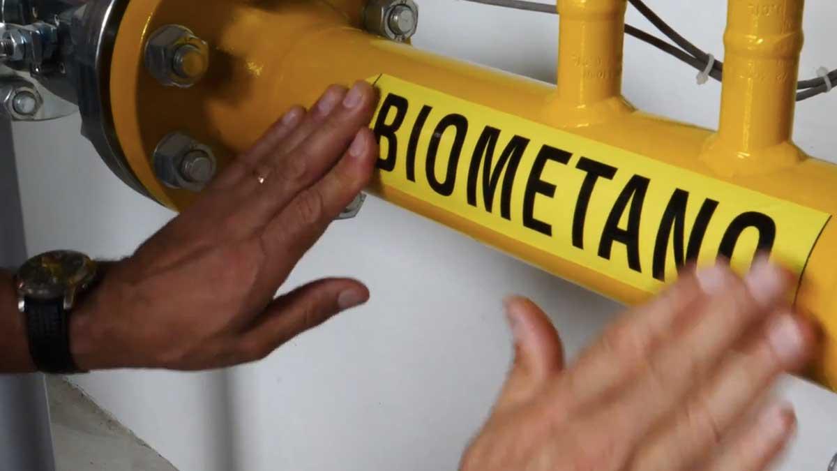 biometano-2019