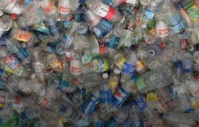 Dalle bottigliette di…