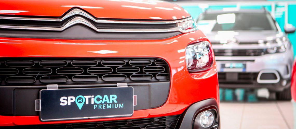 Spoticar: il multimarca per i veicoli d'occasione